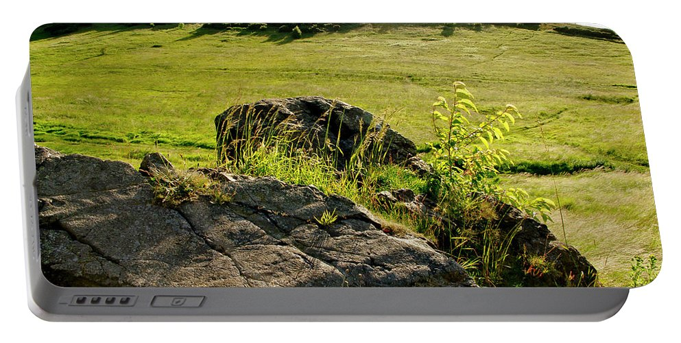 Edinburgh Portable Battery Charger featuring the photograph Growing On Rocks. by Elena Perelman
