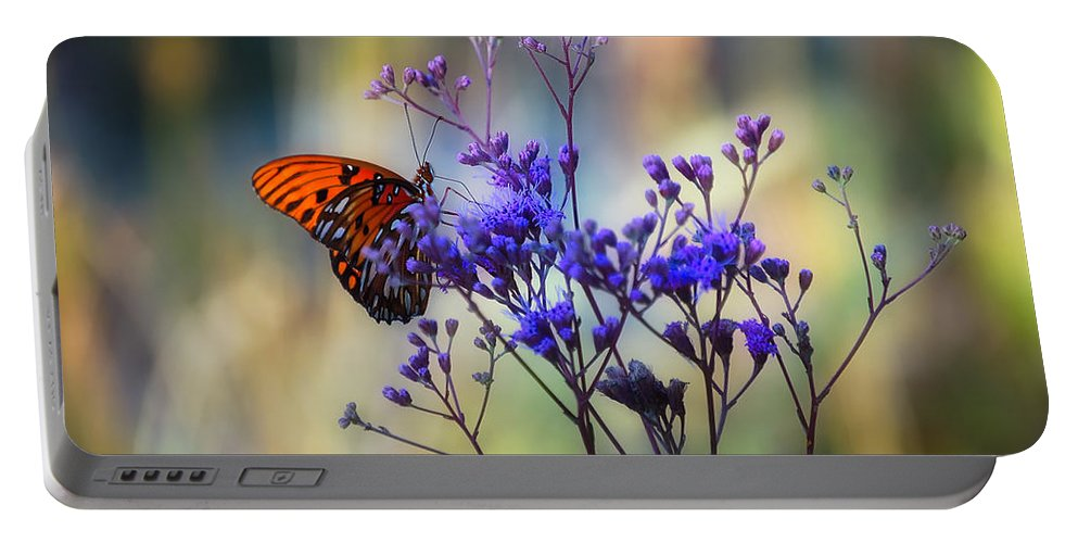 Butterfly Portable Battery Charger featuring the photograph Gulf Fritillary by Rich Leighton