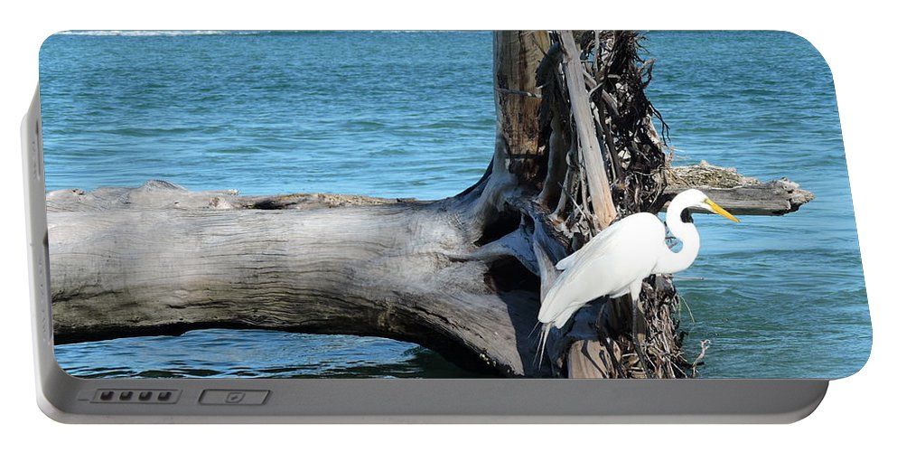Blue Portable Battery Charger featuring the photograph Gulf Shallows by Beth Williams