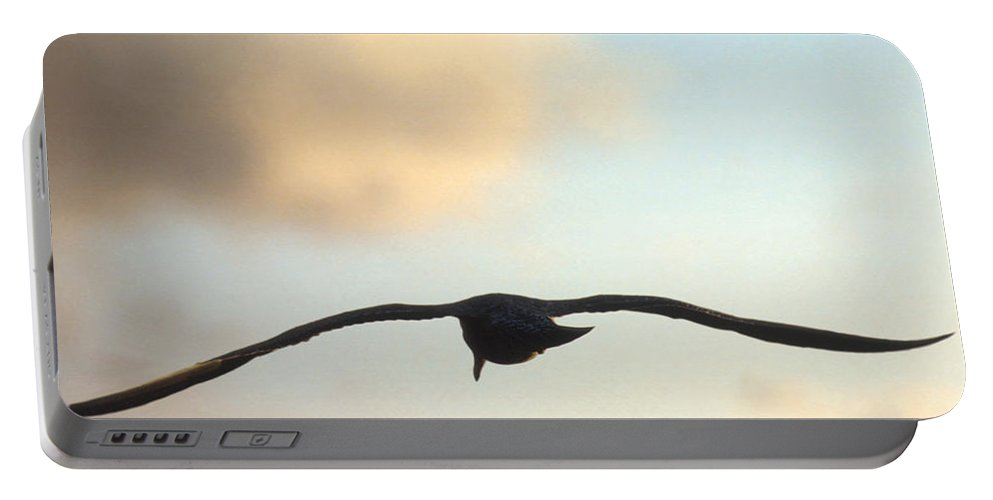 Bird Portable Battery Charger featuring the photograph Gull by Jerry McElroy