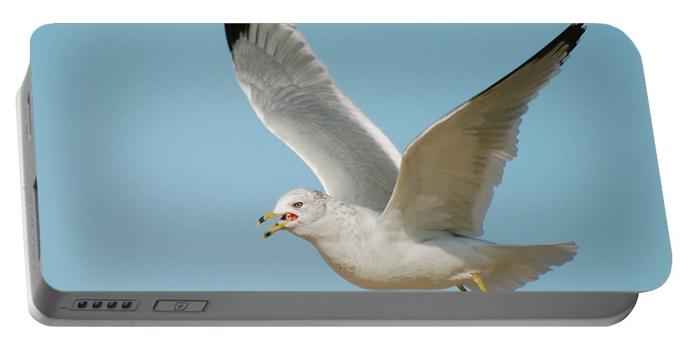 Air Portable Battery Charger featuring the photograph Gull by Michael Peychich