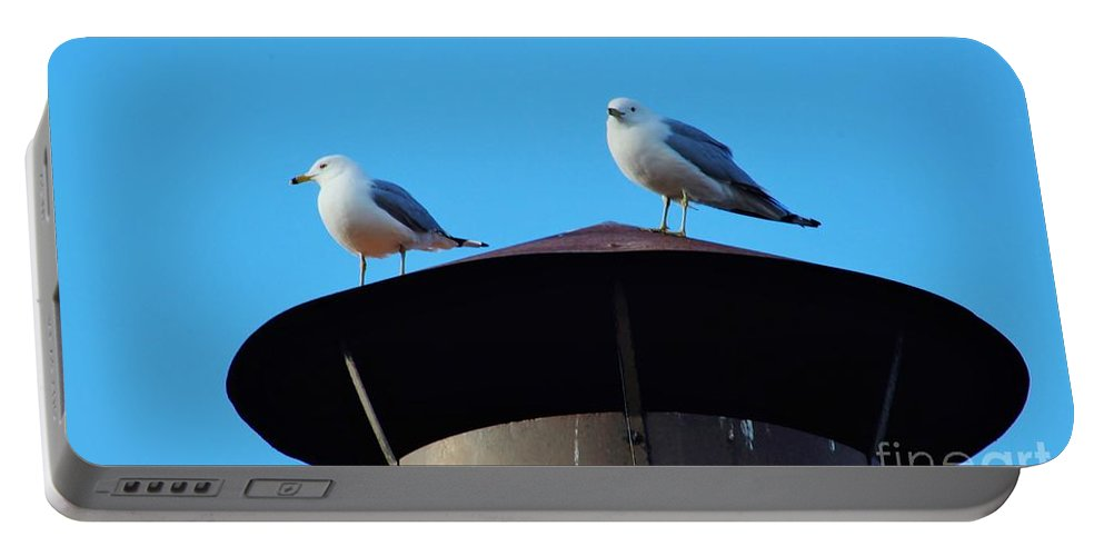 Nature Portable Battery Charger featuring the photograph Gulls by Don Baker
