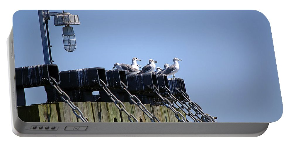 Seagull Portable Battery Charger featuring the photograph Gulls Watching A Buoy by Kenneth Albin