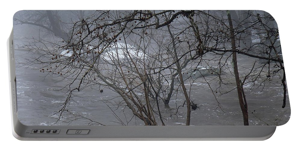 Flood Portable Battery Charger featuring the photograph Gumballs Above The Winter Flood by Mother Nature