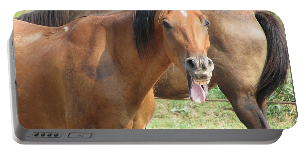 Horse Portable Battery Charger featuring the photograph Haaaaa by Amanda Barcon