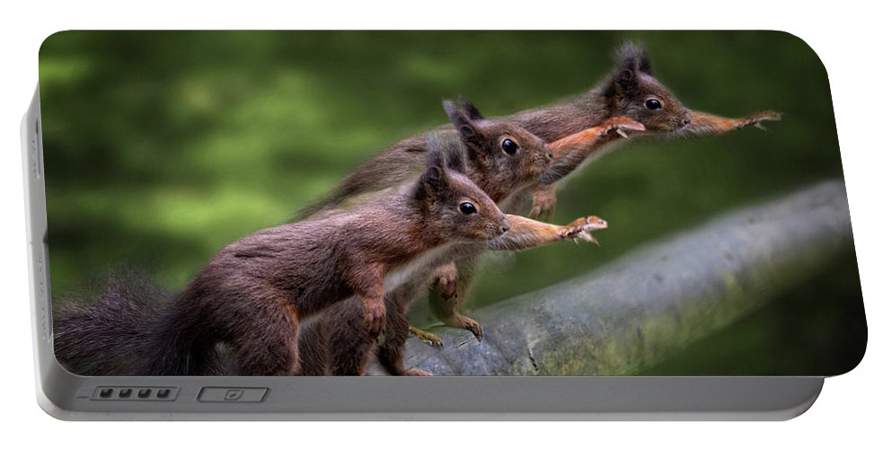 Squirrels Portable Battery Charger featuring the photograph Hail Caesar by Ceri Jones