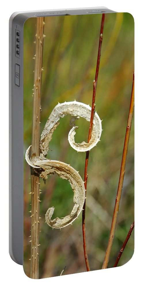 Botanical Portable Battery Charger featuring the photograph Handcuffed by Donna Blackhall