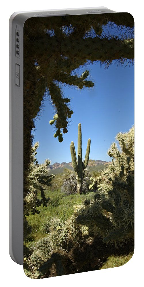 Saguaro Portable Battery Charger featuring the photograph Hands Up You're Surrounded by Jill Reger