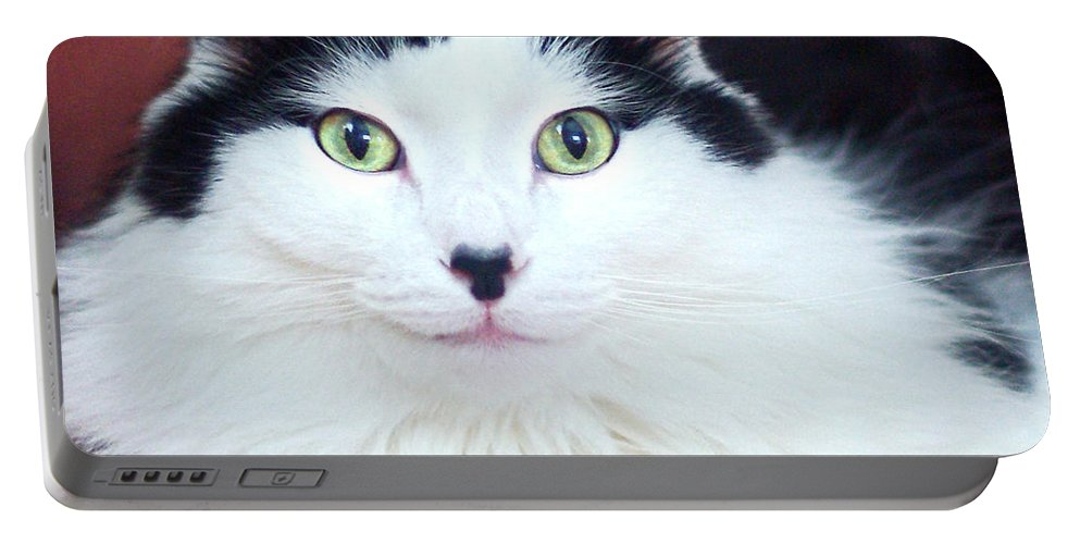 Cat Portable Battery Charger featuring the photograph Handsome Tuxy by Byron Varvarigos