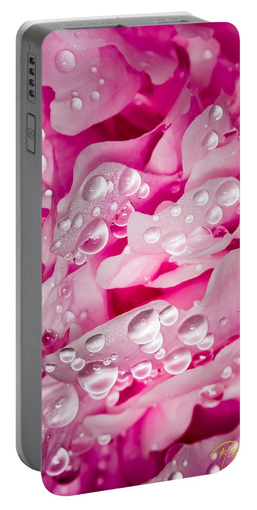 Garden Portable Battery Charger featuring the photograph Hanging Droplets by Rikk Flohr