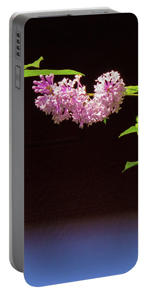 Flower Pink Alaska Portable Battery Charger featuring the photograph Hanging Flower by Wade Robert