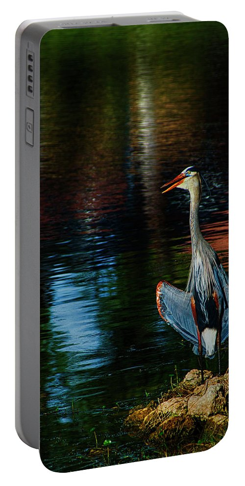 Great Blue Heron Portable Battery Charger featuring the photograph Hanging On The Rocks by Don Columbus
