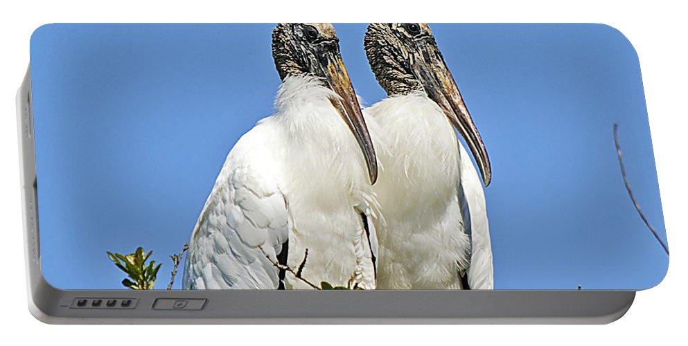 Nature Portable Battery Charger featuring the photograph Happy Couple by Kenneth Albin