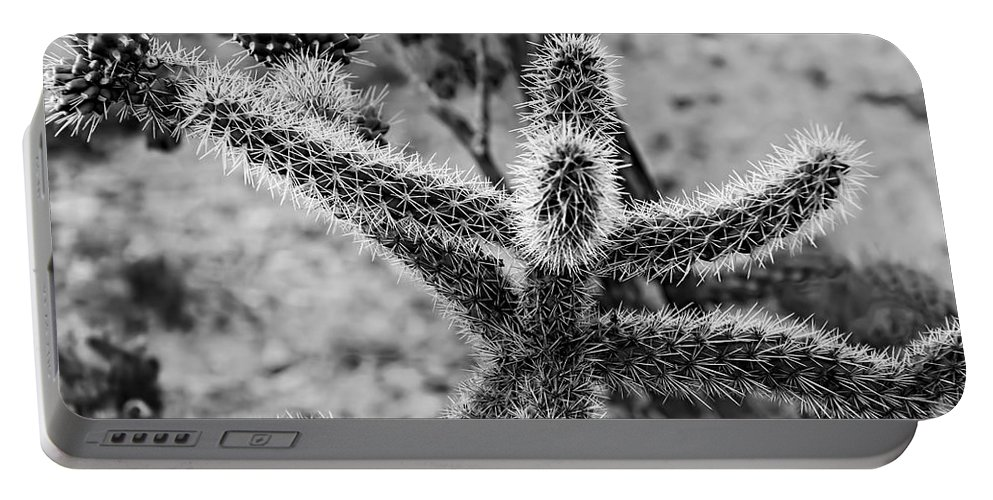 Mark Myhaver Portable Battery Charger featuring the photograph Happy Friends by Mark Myhaver