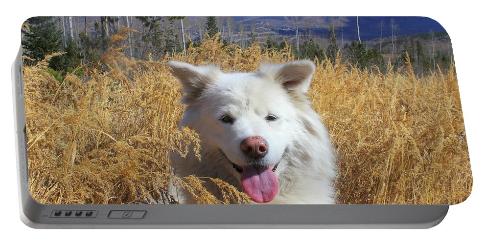 Samoyed Portable Battery Charger featuring the photograph Be The Reason Someone Smiles Today by Fiona Kennard