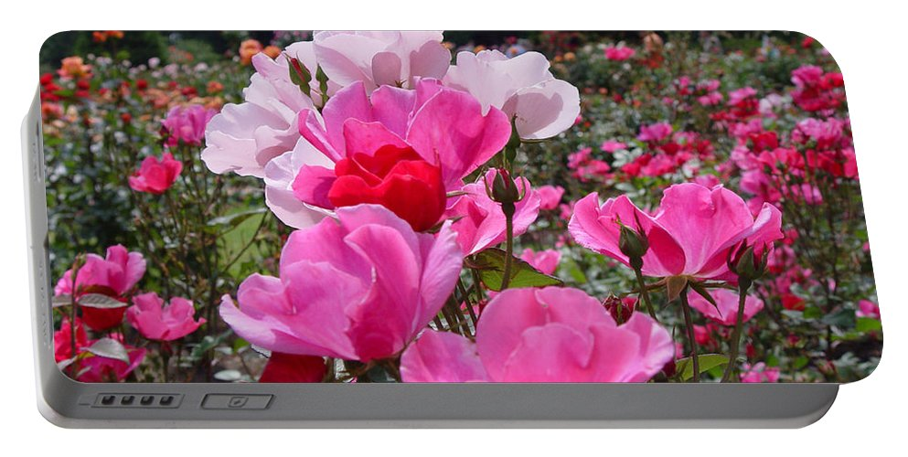 Roses Portable Battery Charger featuring the photograph Happy Pinks by Loretta Luglio