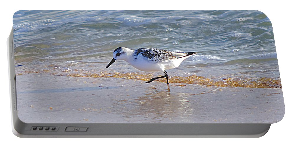 Sandpiper Portable Battery Charger featuring the photograph Happy Sandpiper by Kenneth Albin