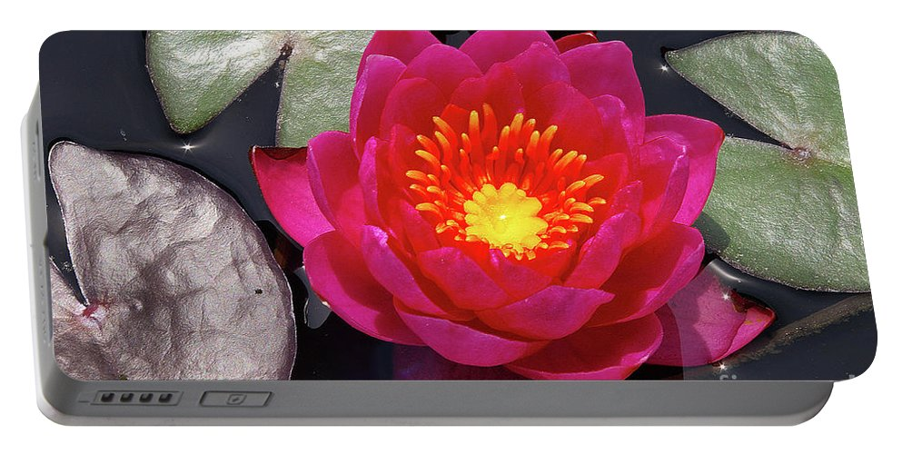Flowers Portable Battery Charger featuring the photograph Hardy Day Water Lily by Rich Walter