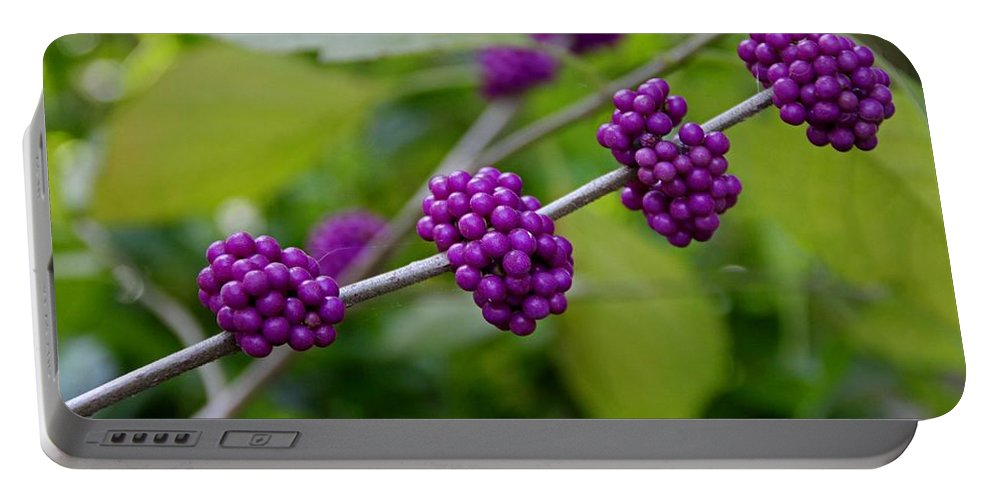 Purple Berry Portable Battery Charger featuring the photograph Harmonizing Passion by Michiale Schneider