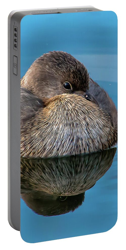 Bird Portable Battery Charger featuring the photograph Harmony by Kelly Lemen