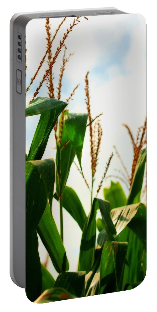 Farm Portable Battery Charger featuring the photograph Harvest Corn Stalks by Angela Rath