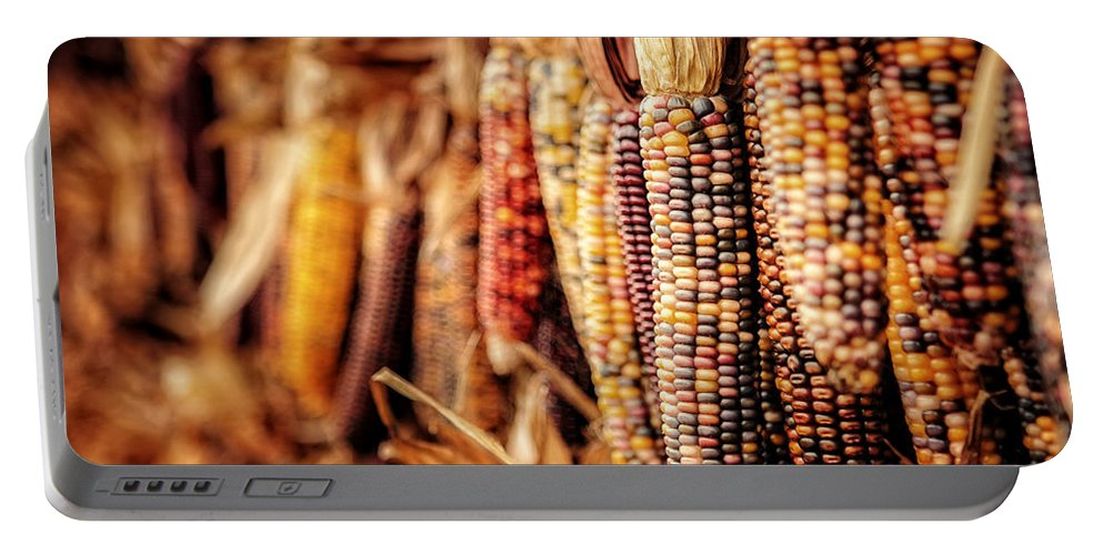 Autumn Portable Battery Charger featuring the photograph Harvest by Lisa Russo