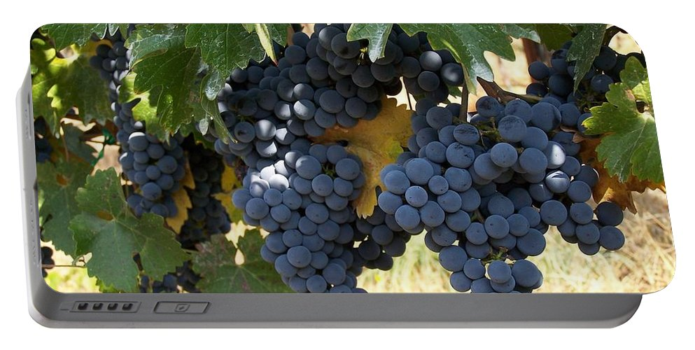 Grapes Portable Battery Charger featuring the photograph Harvest Time by Gale Cochran-Smith