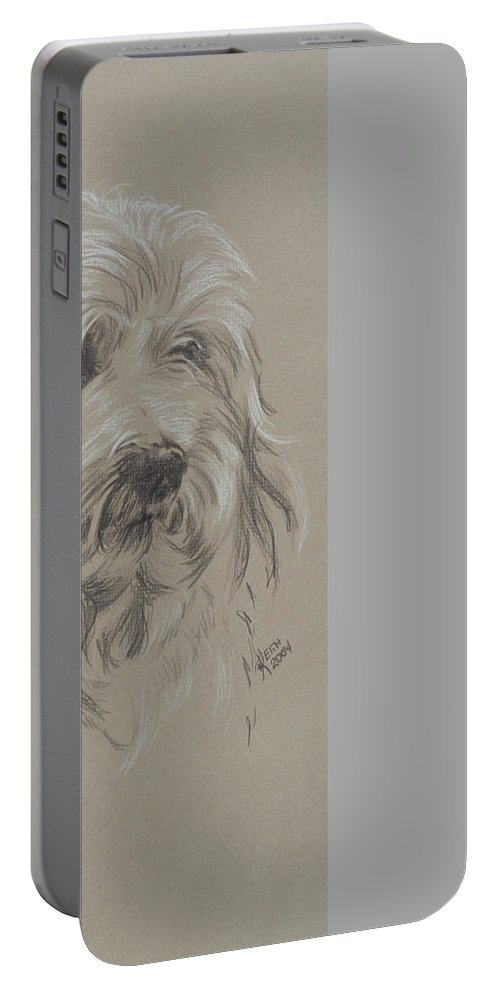 Toy Breed Portable Battery Charger featuring the drawing Havanese by Barbara Keith