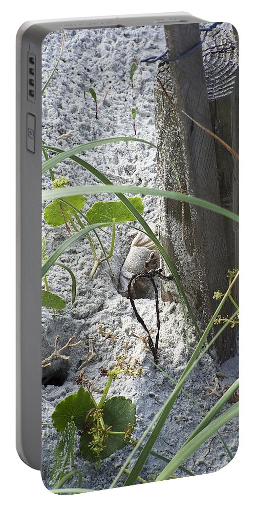 Crab Portable Battery Charger featuring the photograph Have A Crabby Day by Teresa Mucha