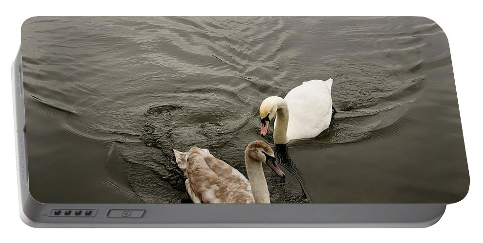 Swan Portable Battery Charger featuring the photograph Have To Behave Yourself. by Elena Perelman