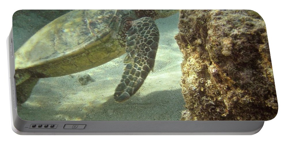Big Portable Battery Charger featuring the photograph Hawaiian Green Sea Turtle by Michael Peychich