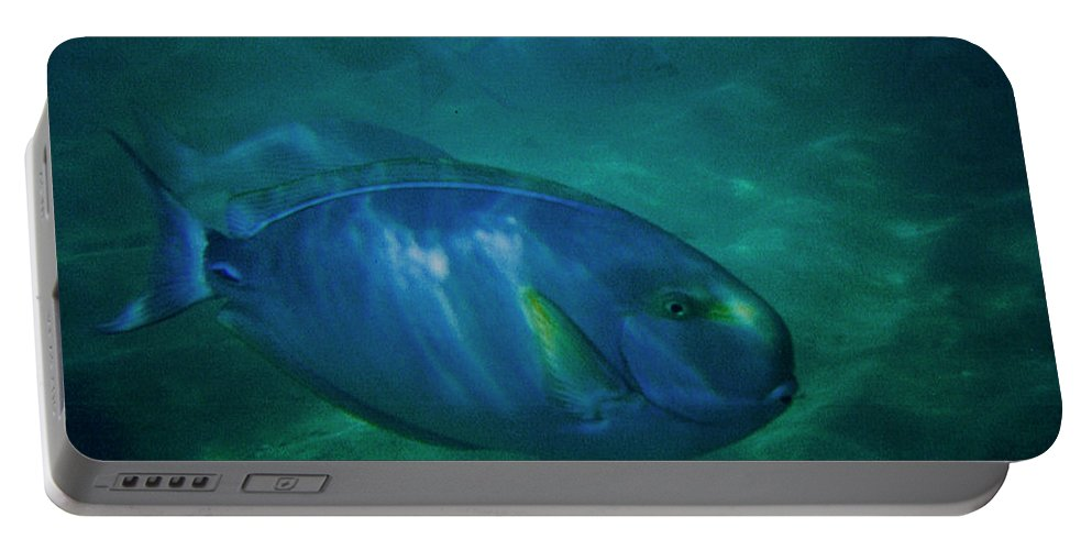 Lagoon Portable Battery Charger featuring the photograph Hawaiian Tang Fish by Tommy Anderson