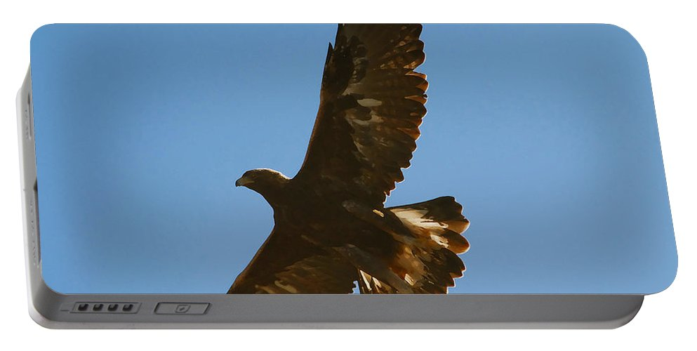 Hawk Portable Battery Charger featuring the photograph Hawk In Flight by David Lee Thompson