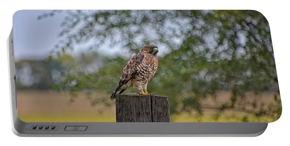 South Dakota Portable Battery Charger featuring the photograph Hawk On A Fence Post by M Dale