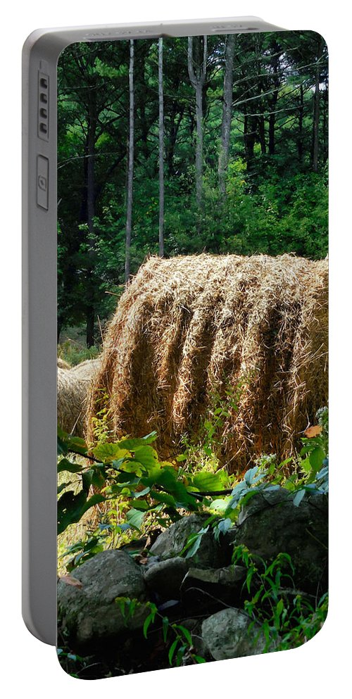 Hay Bay Rolls Portable Battery Charger featuring the painting Hay Bay Rolls 2 by Jeelan Clark