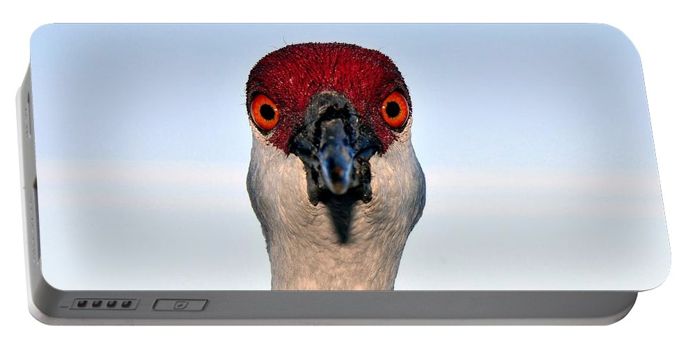 Sand Hill Crane Portable Battery Charger featuring the photograph Head Shot by David Lee Thompson