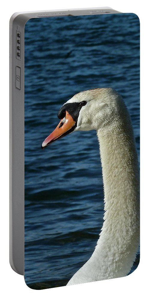 Birds Portable Battery Charger featuring the photograph Head Shot by Diana Hatcher