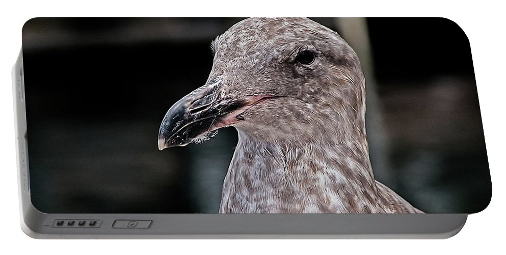 Seagull Portable Battery Charger featuring the photograph Head Shot by Jay Billings