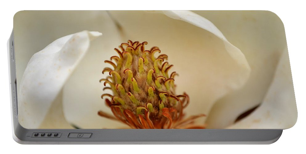 Magnolia Portable Battery Charger featuring the photograph Heart Of Magnolia by Larry Bishop