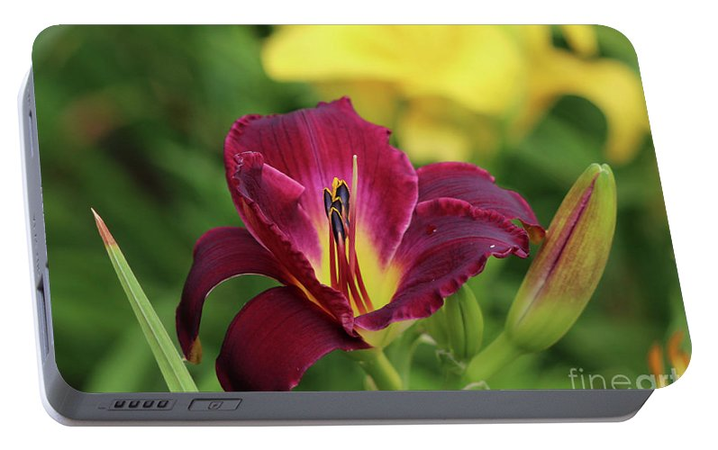 Mums Portable Battery Charger featuring the photograph Hearts Afire Daylily by Lori Tordsen