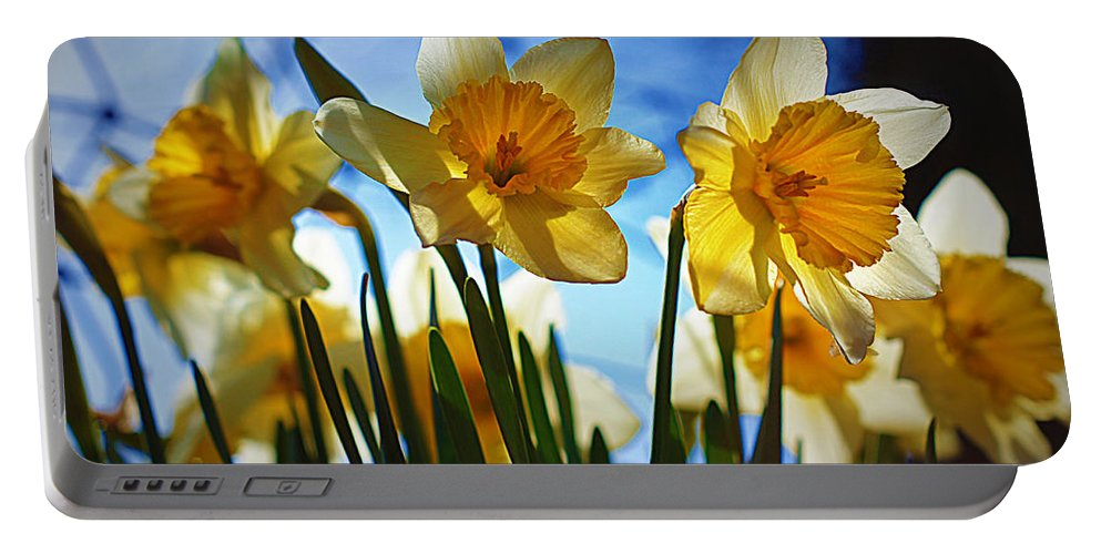 Flower Portable Battery Charger featuring the photograph Hello Spring by Cricket Hackmann
