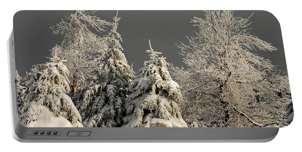 Winter Portable Battery Charger featuring the photograph Here Comes The Sun by Lois Bryan