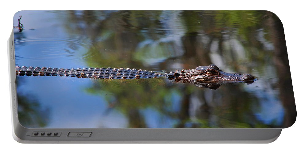Alligator Portable Battery Charger featuring the photograph Here He Comes by Susanne Van Hulst