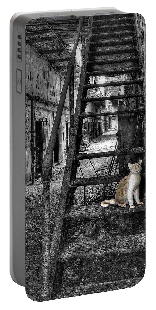 Abandoned Portable Battery Charger featuring the photograph Here Kitty Kitty Kitty... by Evelina Kremsdorf