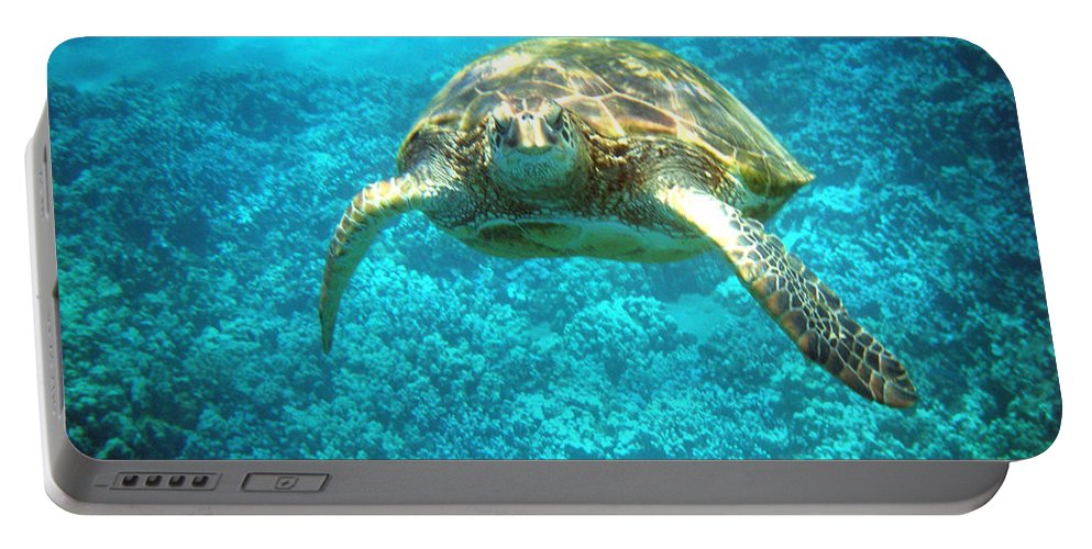 Sea Turtle Portable Battery Charger featuring the photograph Here's Looking At You by Angie Hamlin