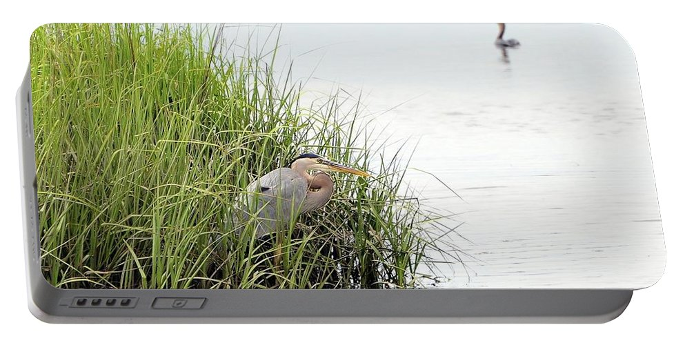 Great Blue Heron Portable Battery Charger featuring the photograph Heron And Cormorant by Al Powell Photography USA