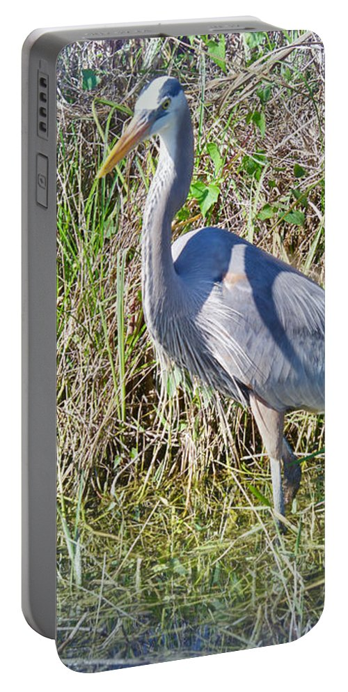 Egret Portable Battery Charger featuring the photograph Heron In The Wetlands by Judy Kay