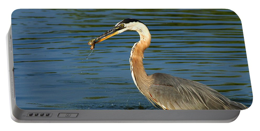 Clay Portable Battery Charger featuring the photograph Herons Catch by Clayton Bruster