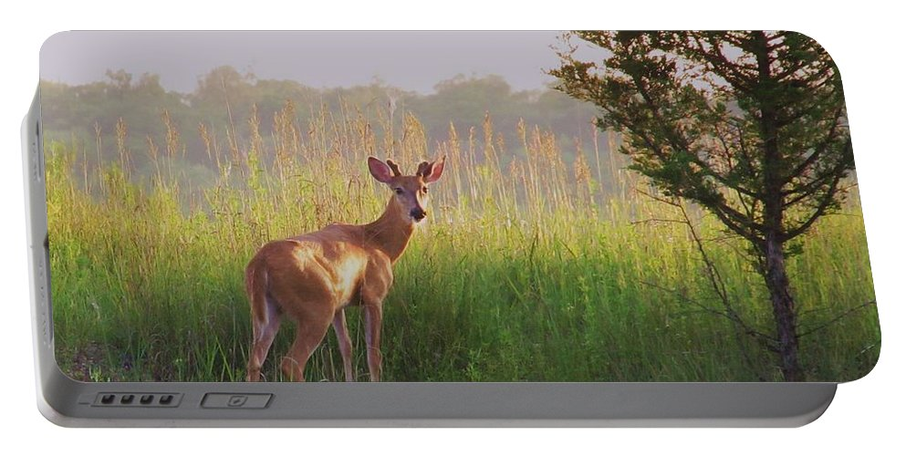 Deer Photograph Portable Battery Charger featuring the photograph Hesitation by Marilyn Smith