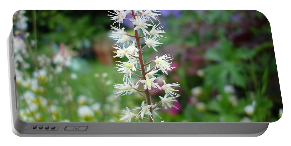 Flower Portable Battery Charger featuring the photograph Heucharella - Fairy Bells by Susan Baker